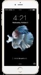 תיקון מסך אייפון פלוס Apple iPhone 7