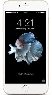 תיקון מסך אייפון Apple iPhone 6S - 1