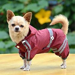 מעיל גשם ניילון לכלבים