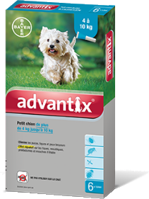 """אדוונטיקס אמפולות קוטלות ודוחות טפילים Advantix לכלבים 4-10 ק""""ג - 1"""