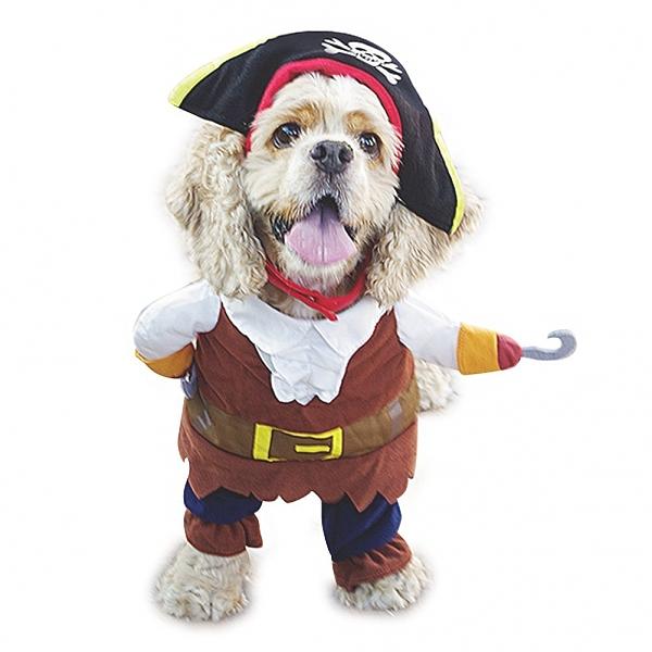 תחפושת פיראט לכלב קטן עד בינוני - 1