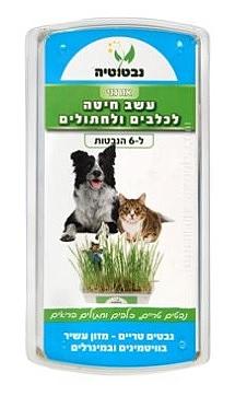 עשב חיטה להנבטה לכלבים, חתולים ולמכרסמים - 1