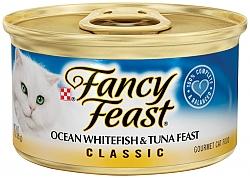 פנסי פיסט מעדן דג אוקיינוס וטונה