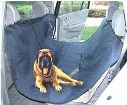 כיסוי למושב רכב אחורי