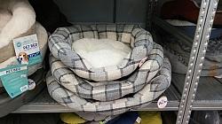 מיטה אפור לבן סקוטי
