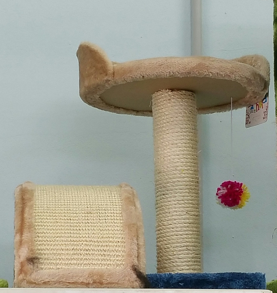 מתקן גירוד לחתול - 1