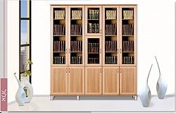 ספריית ארון קודש דגם אלול