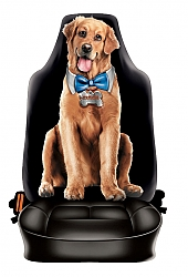 כיסוי גב לכסא רכב