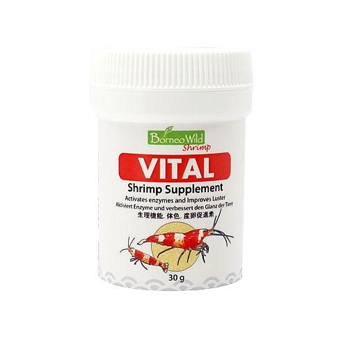 Borneo Wild VITAL - 1