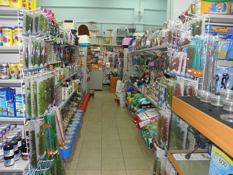מולי חנות חיות8