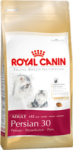 רויאל קנין פרסי לחתול בוגר  Royal Canin