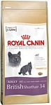 רויאל קנין לחתול ברטי Royal Canin קג 4