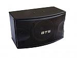 רמקול עץ להתקנה - BTS BS450