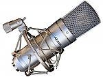 מיקרופון קונדנסר Alctron MC310