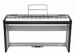 פסנתר חשמלי Ringway RP-30