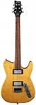 גיטרה חשמלית FRAMUS RENEGADE PRO HV
