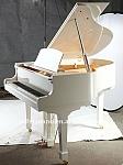 פסנתר כנף  אקוסטי WAGNER GP-148 - L2