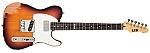 גיטרה חשמלית ESP / LTD TE-202