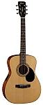 גיטרה אקוסטית מוגברת כולל נרתיק CORT AF510E NS