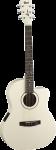 גיטרה אקוסטית מוגברת CORT JADE1E AW