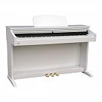 פסנתר חשמלי +3 שנות אחריות Ringway TG-8867