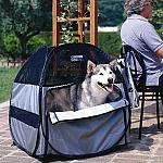 PetEgo - תיק לכלב / אוהל לכלב - לארג
