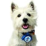 LeashLocket - רצועת כלב נשלפת S