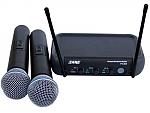 זוג מיקרופונים FV-304 Echo