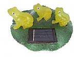 צפרדעים מוארות