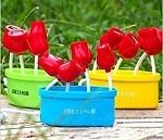 USB פרחים