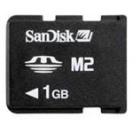 SanDisk Micro M2 1GB