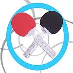 זוג מחבטי טניס שולחן (פינג פונג) ל-wii