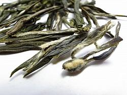 תה ירוק - לונג ג