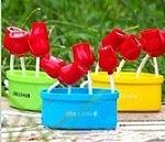 תחנת USB פרחים